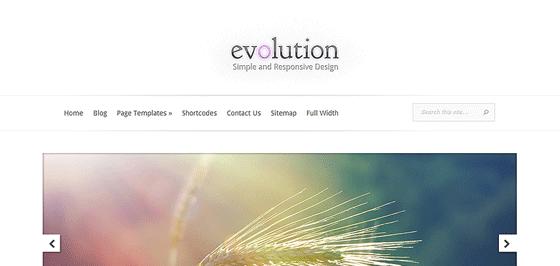 Evolution, thème responsive professionnel par Elegant Thèmes