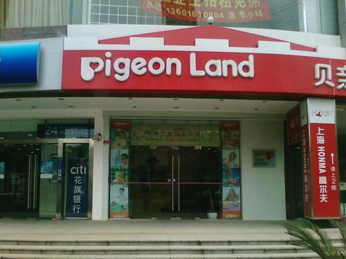 L'affiliation WordPress et les pigeons